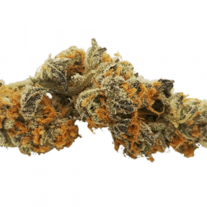 order Meat Breath Strain Online
