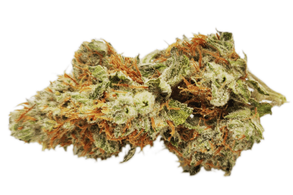 sour tahoe strain is potent as f*ck