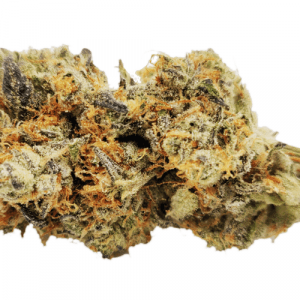 garlic breath strain online information and reviews