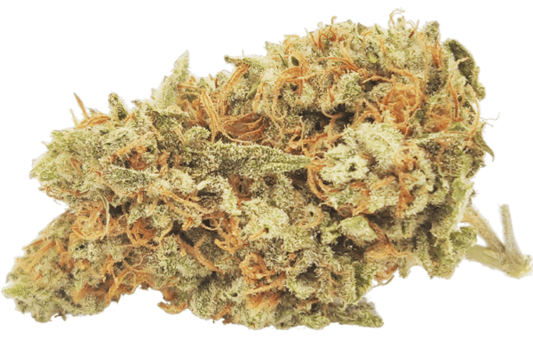 Northern Lights strain picture
