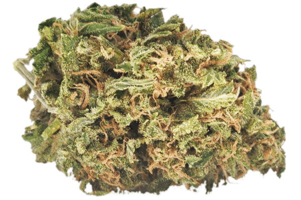Orange Cookies nug picture