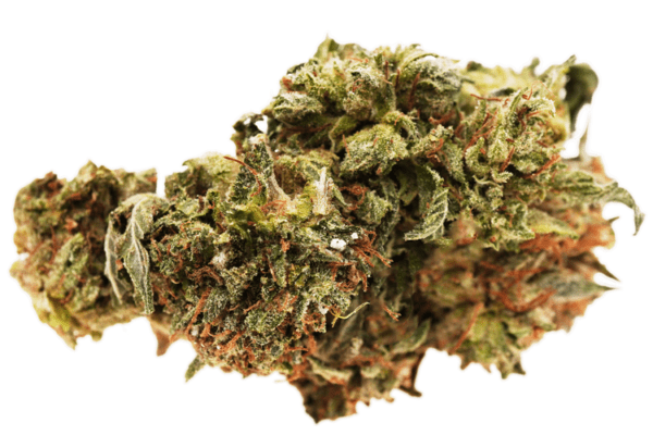 Tom Ford Pink Death strain nug picture