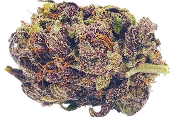 Primal Purple strain nug
